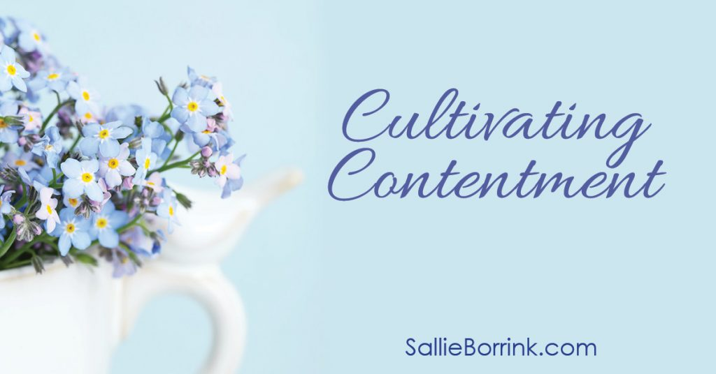 Cultivating Contentment 2