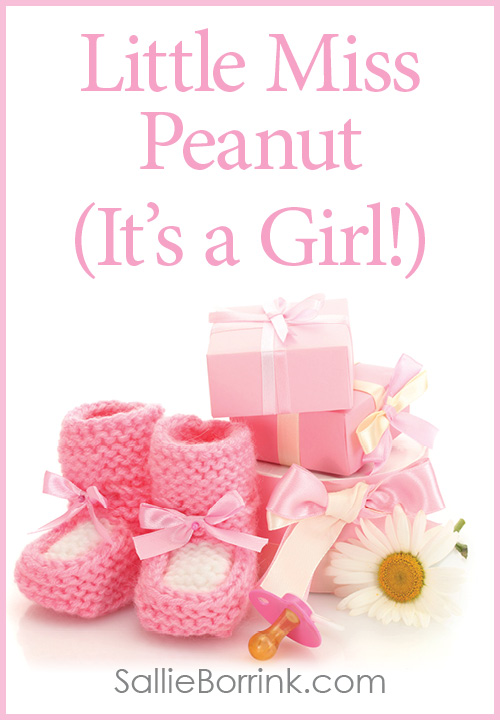 Little Miss Peanut - It Is a Girl 2