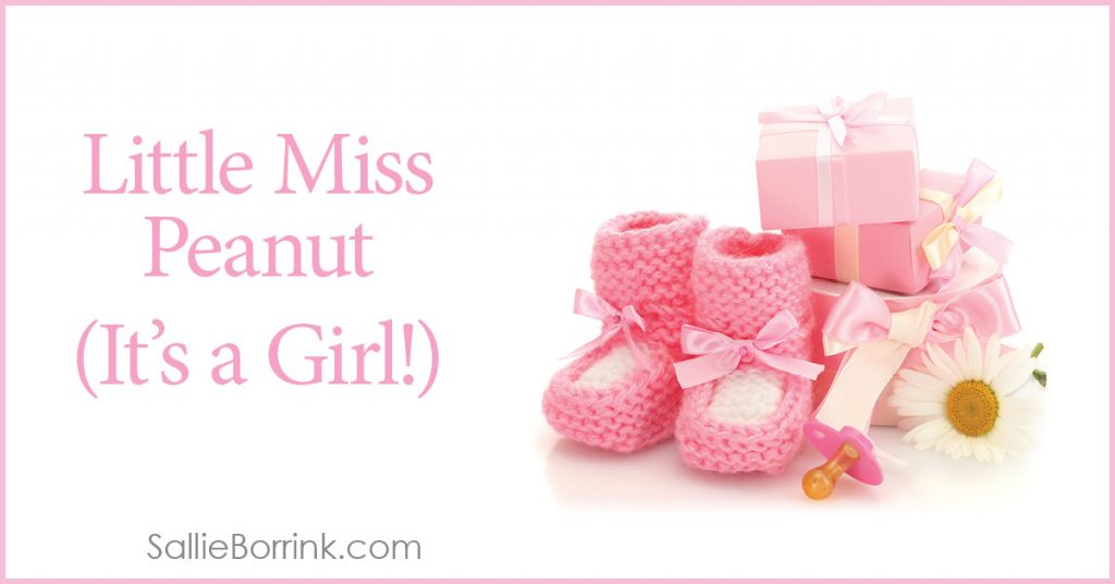 Little Miss Peanut - We're Having a Girl 2