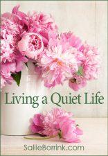 Living a Quiet Life