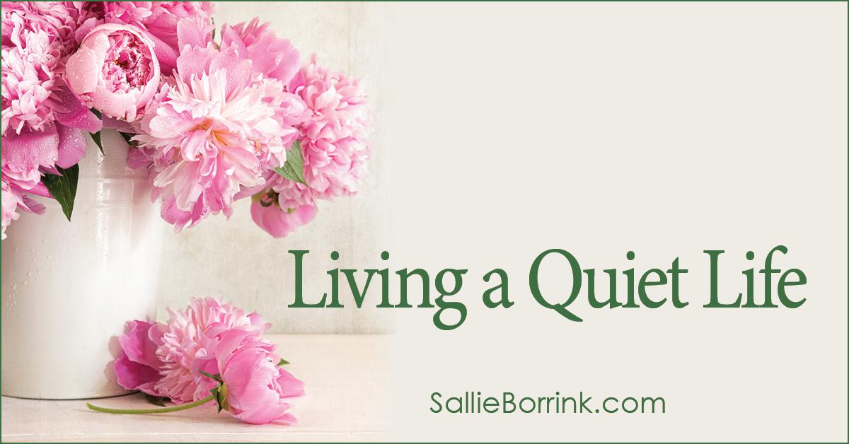 Living a Quiet Life 2