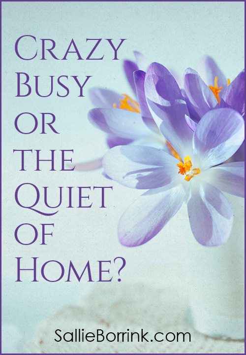 Crazy Busy or the Quiet of Home