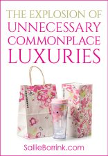 The Explosion of Unnecessary Commonplace Luxuries