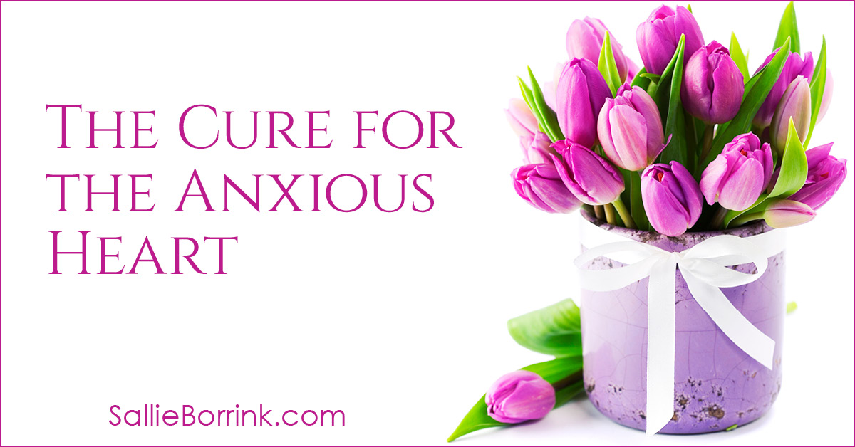 The Cure for the Anxious Heart 2