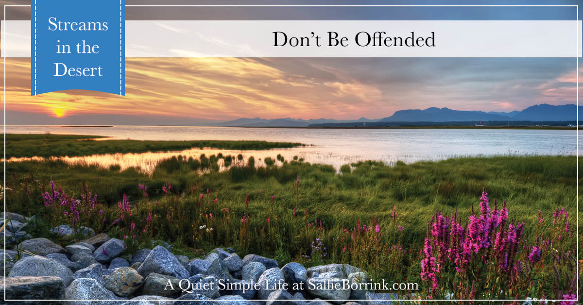 Don't Be Offended - Streams in the Desert