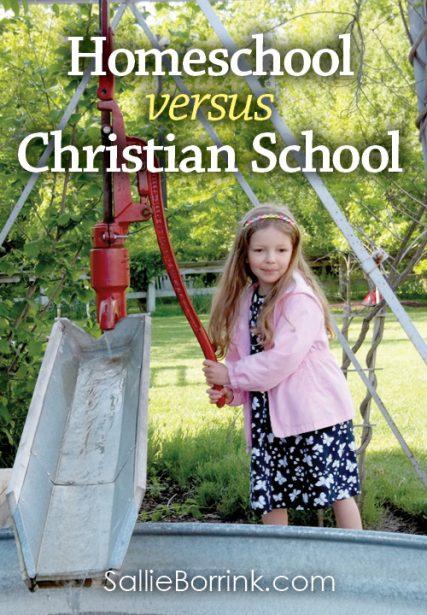Homeschool versus Christian School