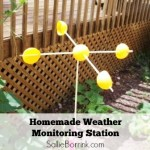 Homemade Weather Monitoring Station and Children's Gardening Books