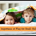 The Importance of Play for Small Children