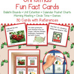 SB-Christmas-Pocket-Fact-Cards-PREVIEW-020114