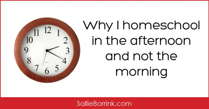 Why I Homeschool in the Afternoon and Not the Morning 2