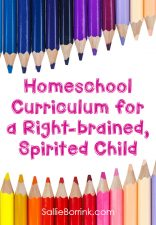 Homeschool curriculum for a right-brained, spirited child – 2013-2014