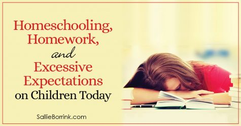 Homeschooling, Homework and Excessive Expectations on Children Today 2