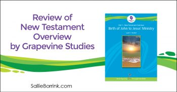 Review of New Testament Overview by Grapevine Studies 2