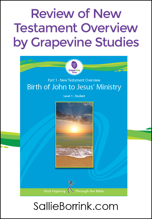 Review of New Testament Overview by Grapevine Studies