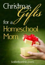 Christmas Gifts for a Homeschool Mom