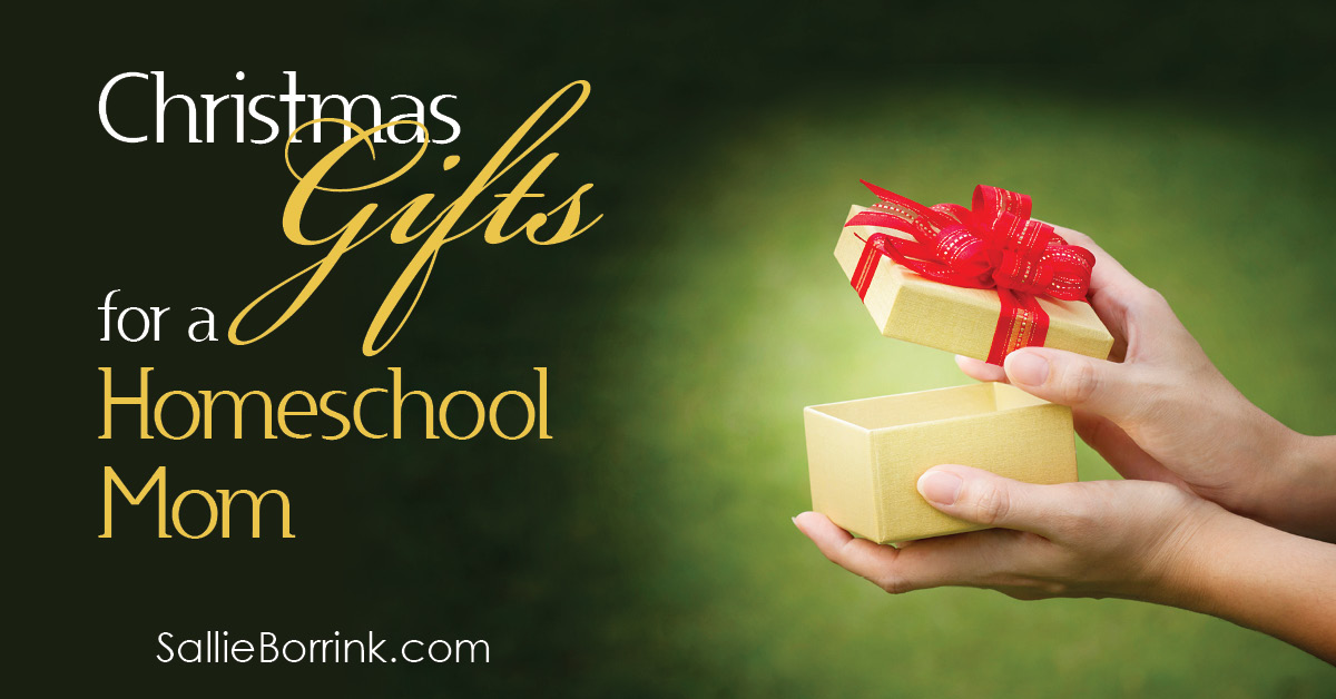 Christmas Gifts for a Homeschool Mom 2