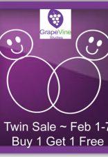 Big Sale at GrapeVine Studies!