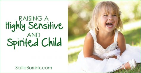 Raising a Highly Sensitive and Spirited Child 2