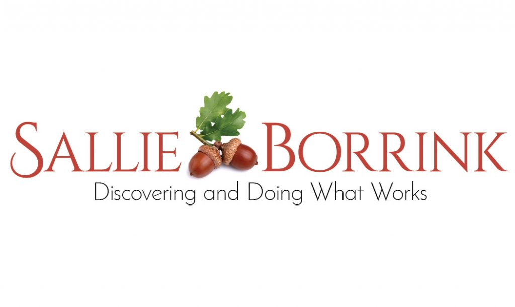 Sallie Borrink Website for Facebook