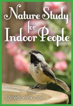 Nature Study Ideas for People Who Prefer to Stay Indoors