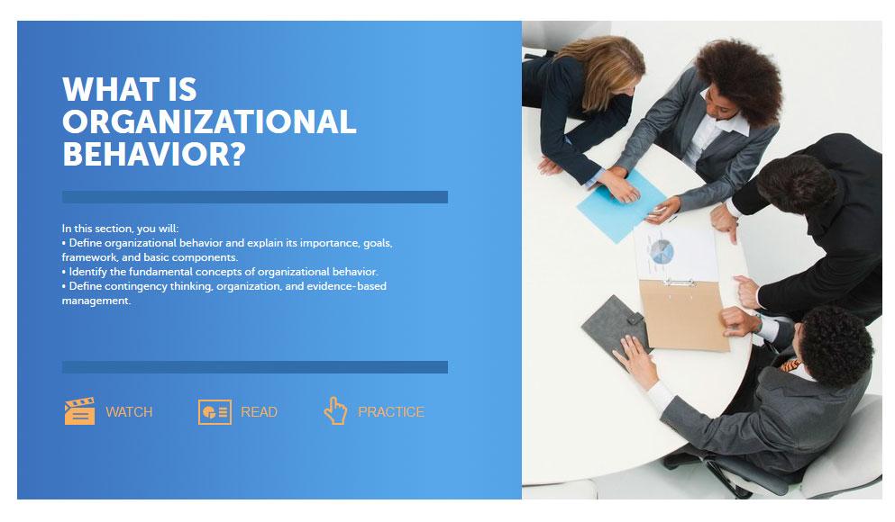 organizational behaviour essay questions