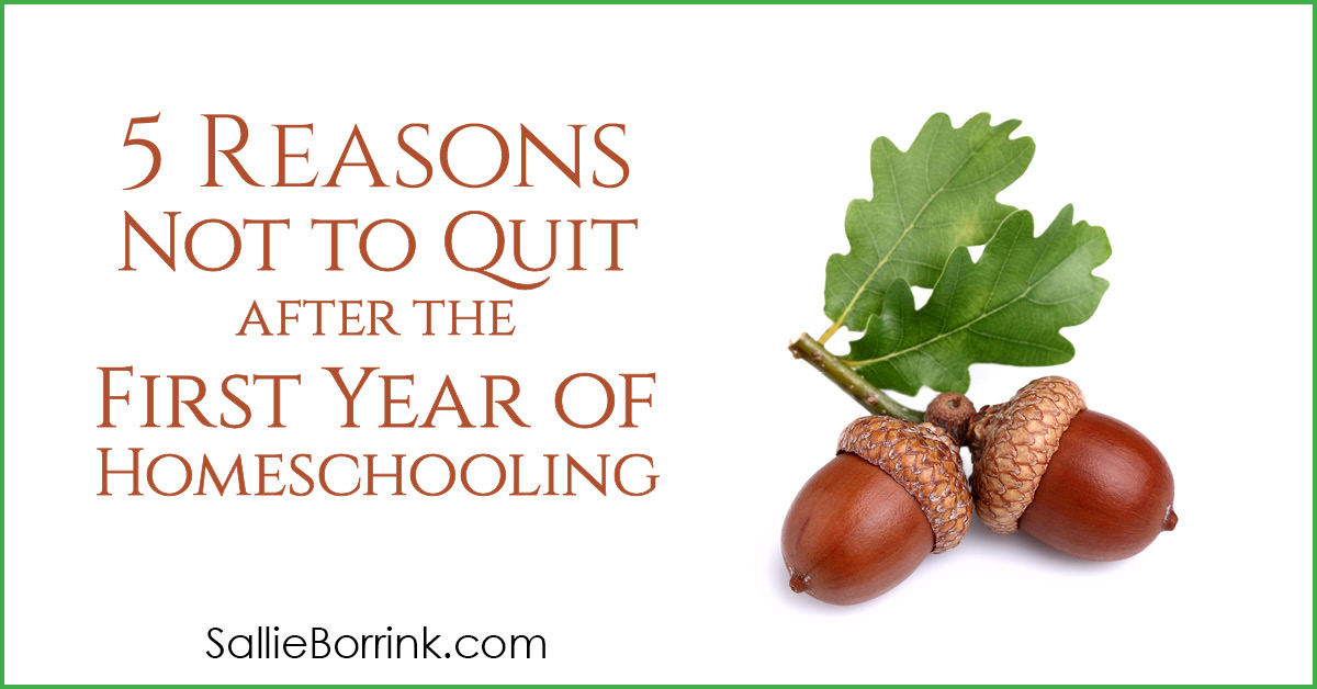 5 Reasons Not to Quit after the First Year of Homeschooling 2