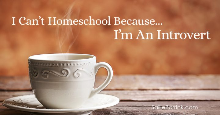 I Can't Homeschool Because... I'm An Introvert 2