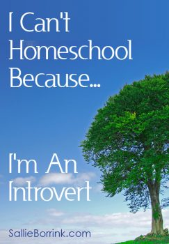 I Can't Homeschool Because I'm an Introvert