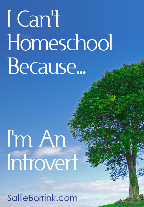 I Can't Homeschool Because... I'm An Introvert