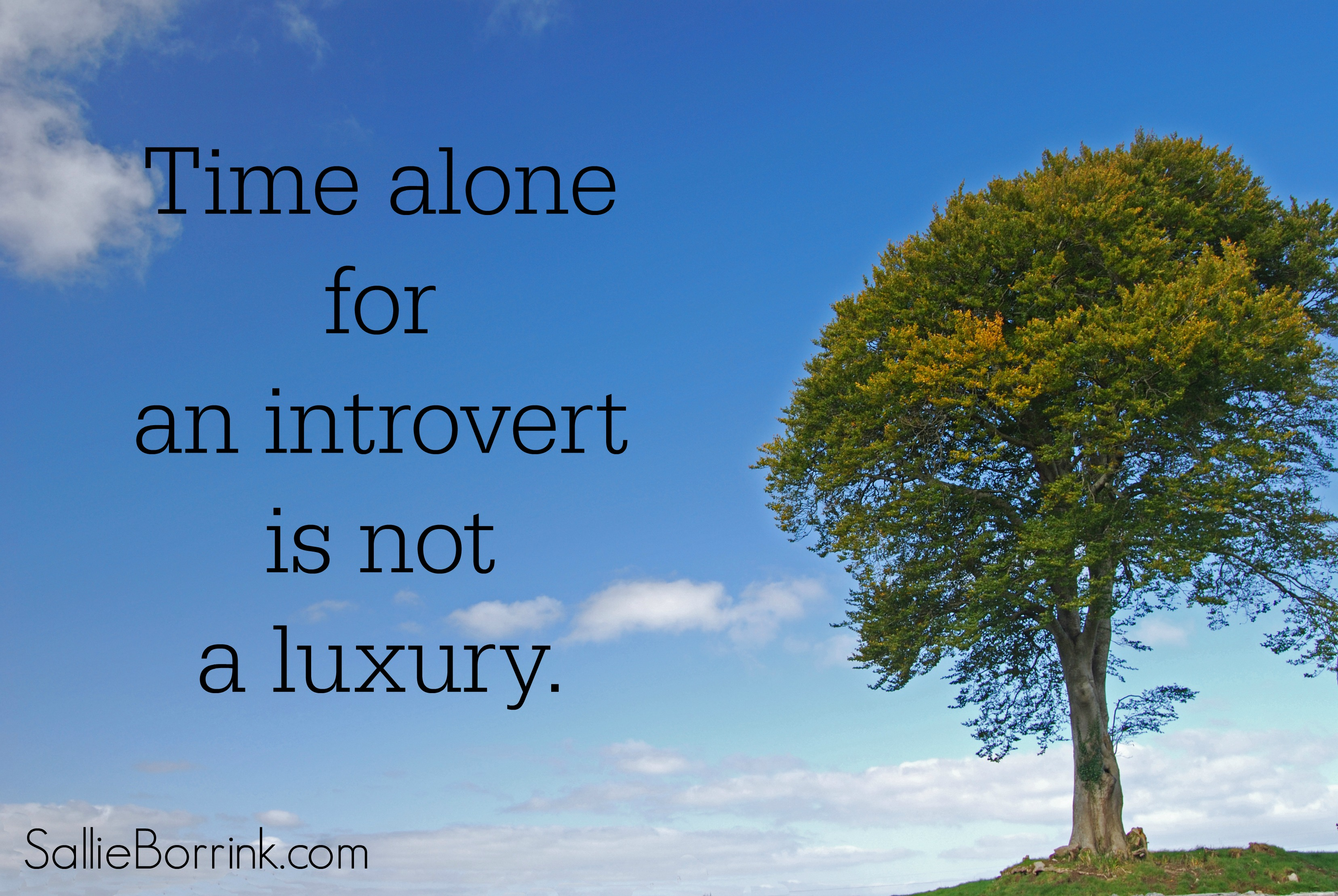 Time alone for an introvert is not a luxury