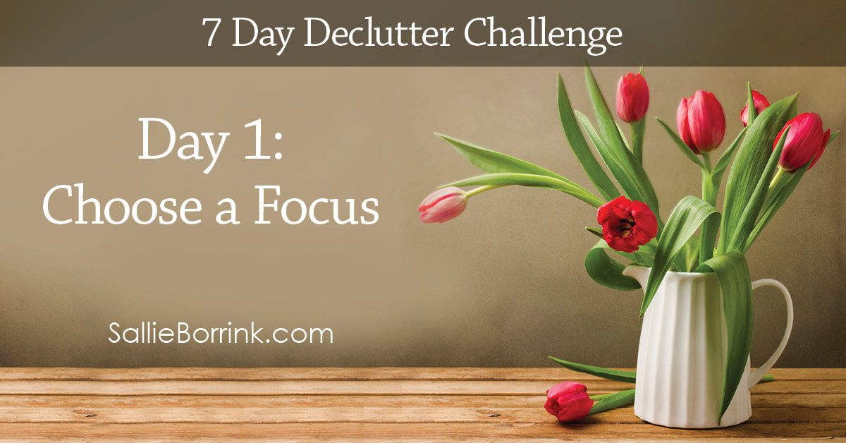 7 Day Declutter Challenge - Day 1w