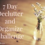 7 Day Declutter and Organize Challenge