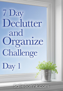 7 Day Declutter and Organize Challenge-Day 1