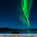 Why perfect and homeschool shouldn't be used in the same sentence