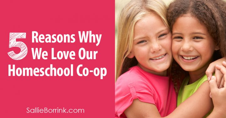 5 Reasons Why We Love Our Homeschool Co-op 2