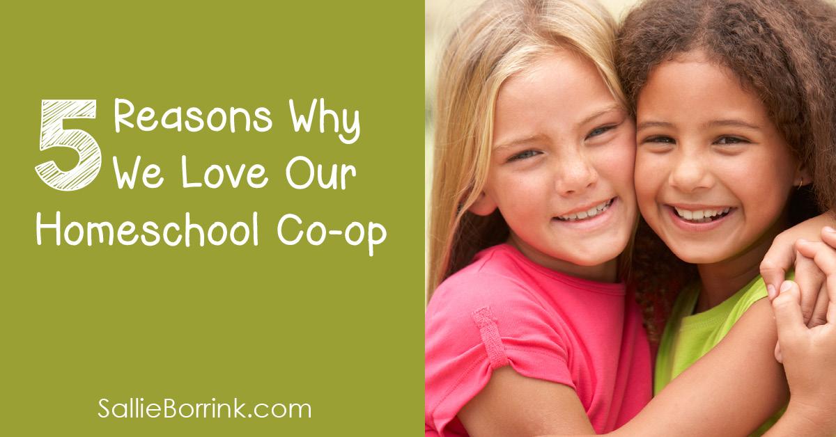 5 Reasons Why We Love Our Homeschool Co-op 2