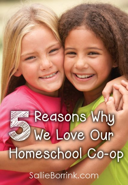 5 Reasons Why We Love Our Homeschool Co-op