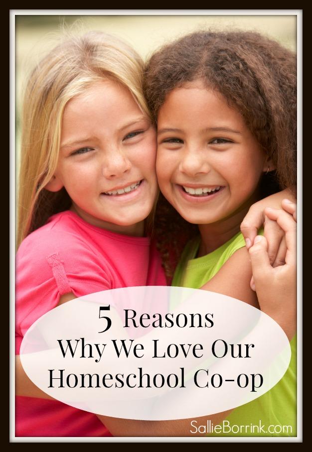 5 Reasons Why We Love Our Homeschool Coop