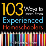 103 Ways to Learn from Experienced Homeschoolers