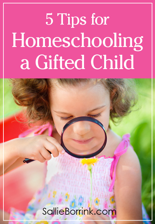 5 Tips for Homeschooling a Gifted Child