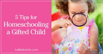 5 Tips for Homeschooling a Gifted Child 2
