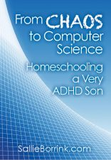 From Chaos to Computer Science - Homeschooling a Very ADHD Son