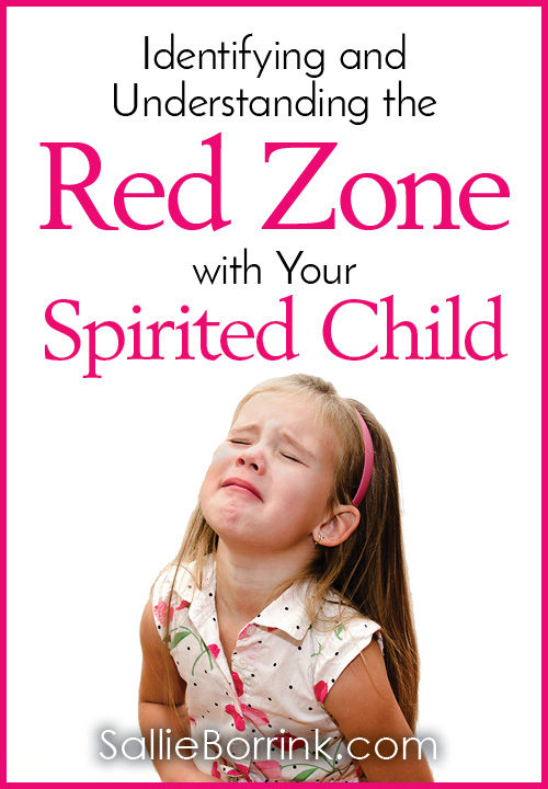 Identifying and Understanding the Red Zone with Your Spirited Child