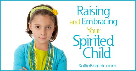 Raising and Embracing Your Spirited Child