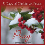 5 Days Christmas Peace-Pray