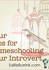 Homeschooling an Introvert 2