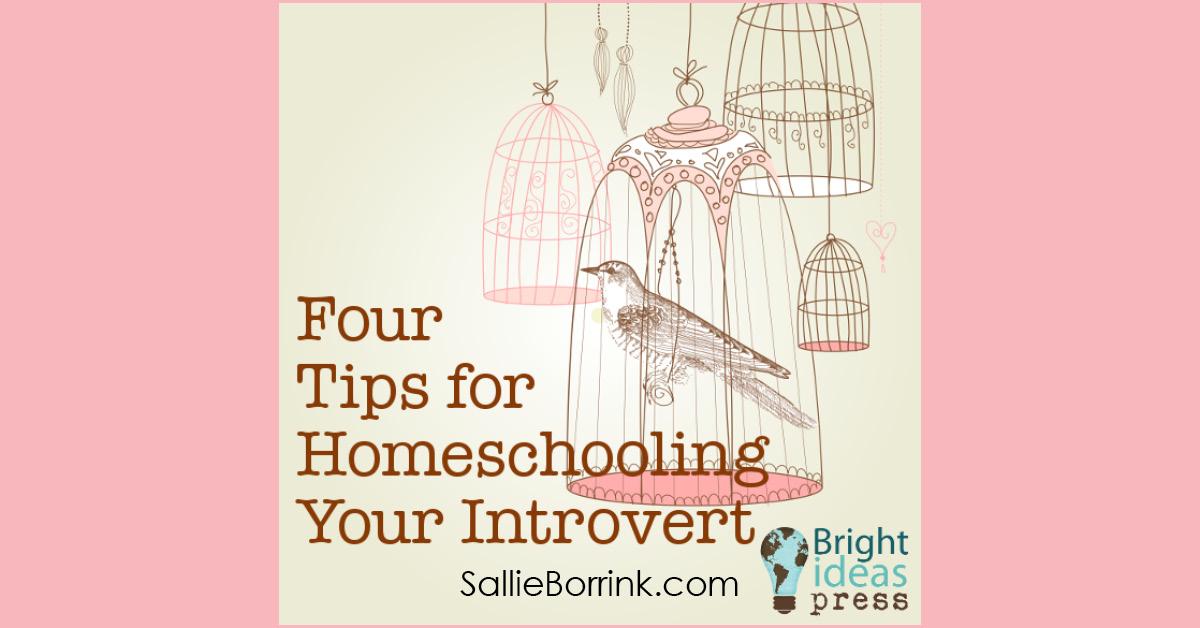 Homeschooling an Introvert 2