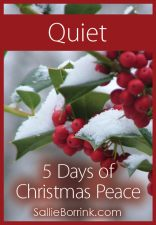 Quiet - 5 Days of Christmas Peace