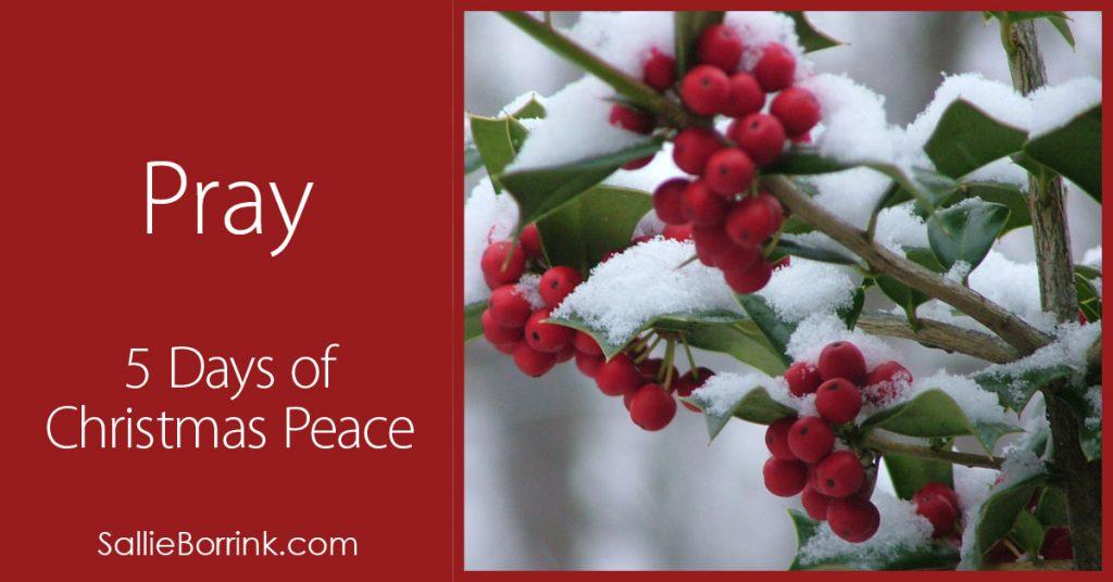 Pray – 5 Days of Christmas Peace