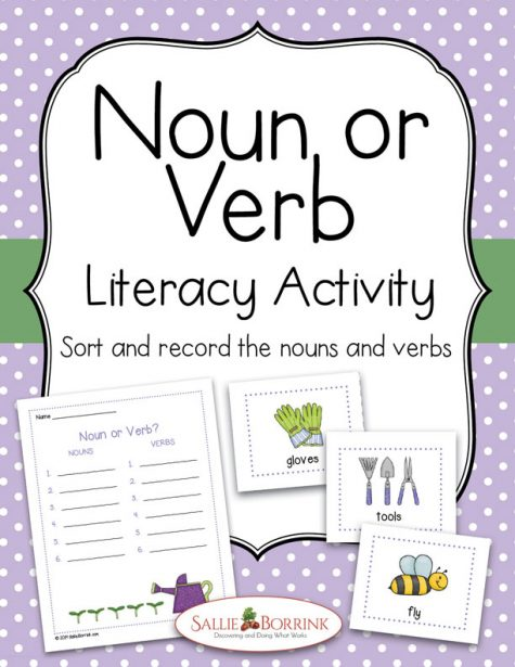 Noun or Verb Literacy Activity